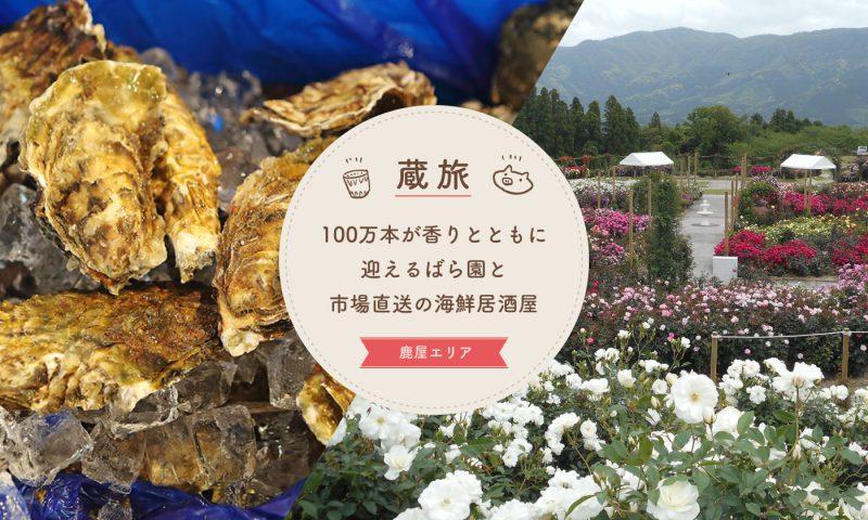 100万本が香りとともに迎えるばら園と市場直送の海鮮居酒屋